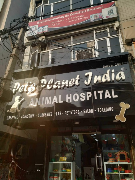 Pets Planet INDIA Number One Dog And CAT Clinic And Hospital