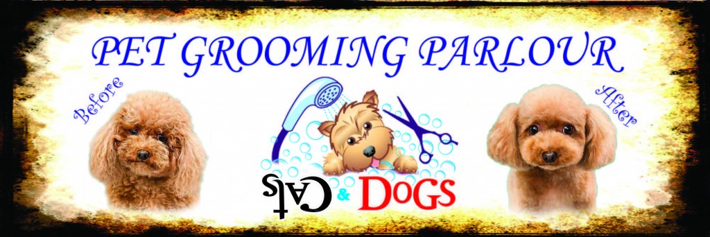 Cats & Dogs pet grooming services